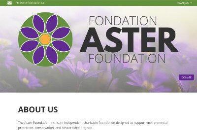 Aster Foundation